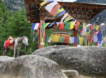 Angkor Tours Bhutan