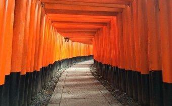 Shrine Inari Religion Japan Pathway Path Temple