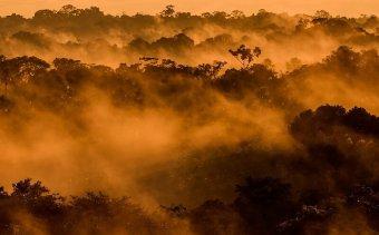 Angkor Tours   Ecuador2
