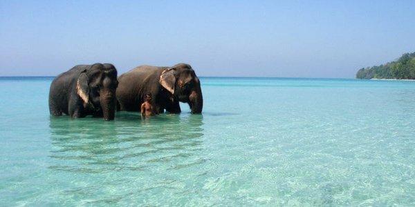 India Angkor Tours andaman