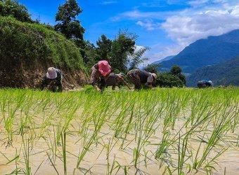 Bhután Angkor Tours