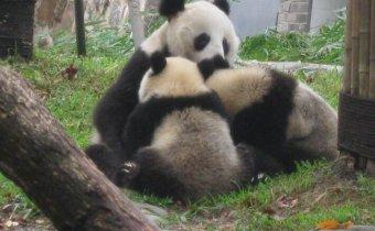 Dél-Kina Angkortours2