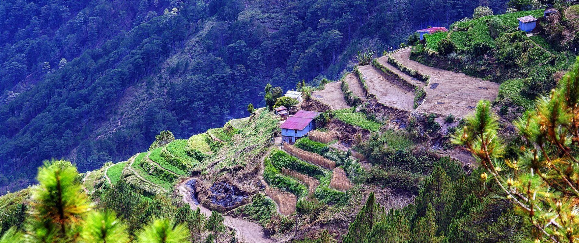 Angkor Tours Fülöp-szigetek rizsterasz